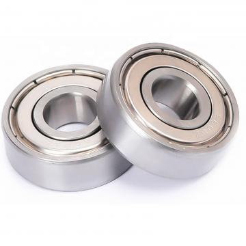 Sky Type/NTN Type/Fyh Type/Tr Type/Fs Type/NSK Type/Pillow Block Bearings Housing