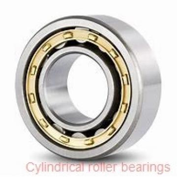 800,000 mm x 1150,000 mm x 155,000 mm  NTN NU10/800 cylindrical roller bearings