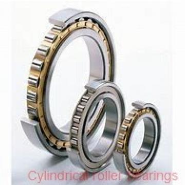 105 mm x 225 mm x 49 mm  NACHI NF 321 cylindrical roller bearings
